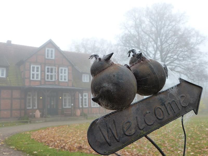 Gutshof-Woldzegarten - Welcome