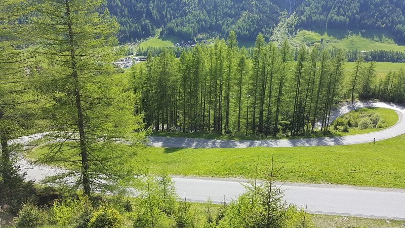 Straße nach Burgstein