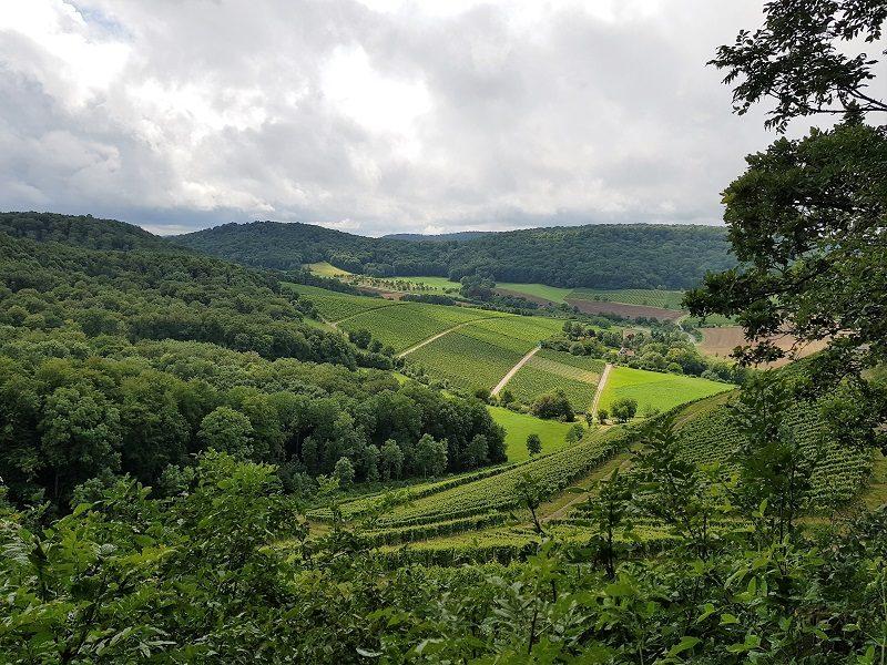 Weinberge unter Wolken in Franken