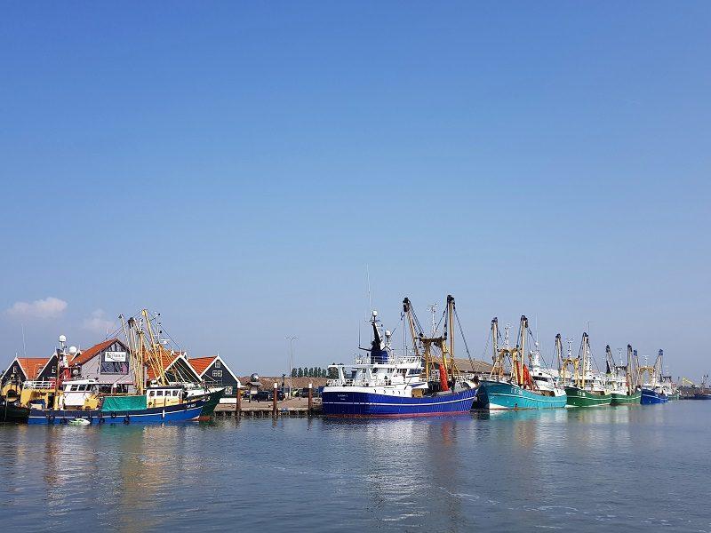 Fischerboote im Hafen von Oudeschild auf Texel