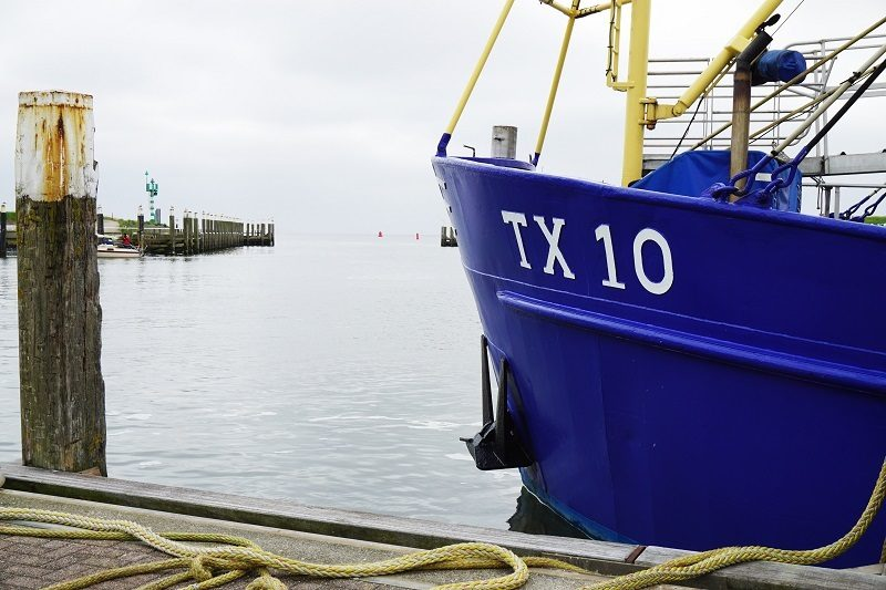 Krabbenkutter TX-10 auf Texel