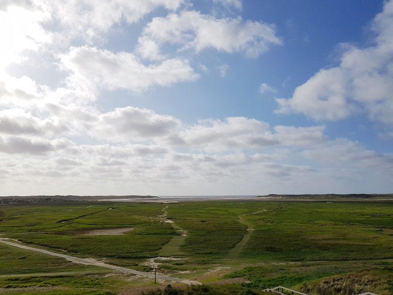 Naturschutzgebiet auf Texel