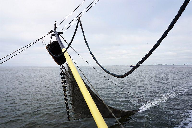 Netz auf dem Krabbenkutter TX-10 bei Texel