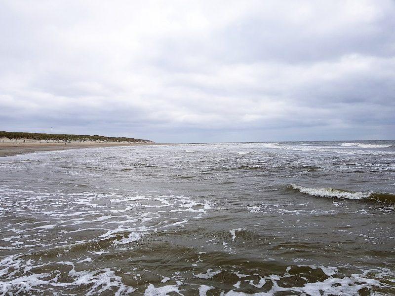 Im Meer bei Texel