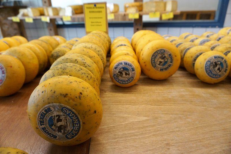 Käse auf Texel