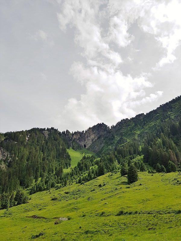 Almwiesen auf dem Weg zur Berndlalm im Salzburger Land