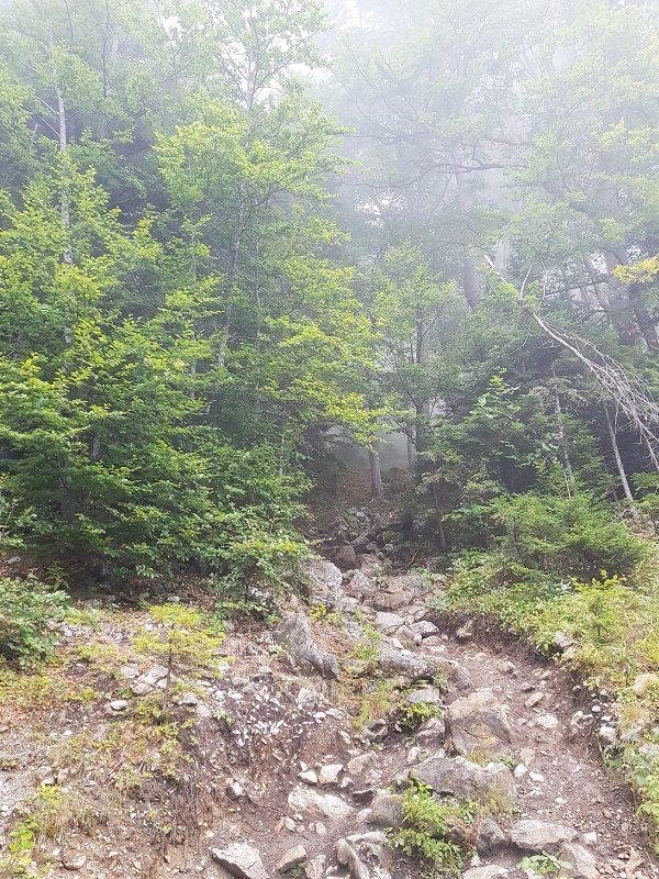Aufstieg durch den Nebel zur Bertahütte in Kärnten - Hüttenkult