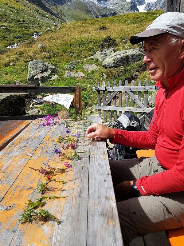 Kräuterkunde mit Wolfgang Schranz im Pitztal