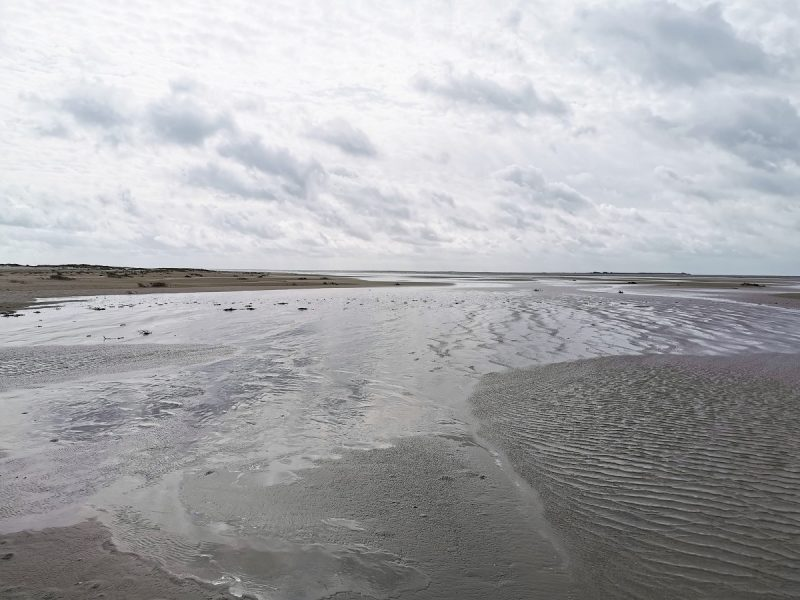 Windiger Strand auf Juist