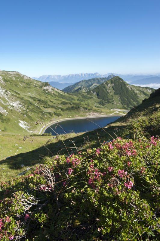 Blick_auf_Seekarsee_Tennen-und Hagengebirge mit Lackenkopf und Rosskopf_Altenmark-Zauchensee Tourismus