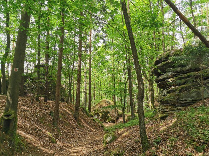 Geißstein auf dem Weg zur Burgruine Lichtenstein in den Haßbergen