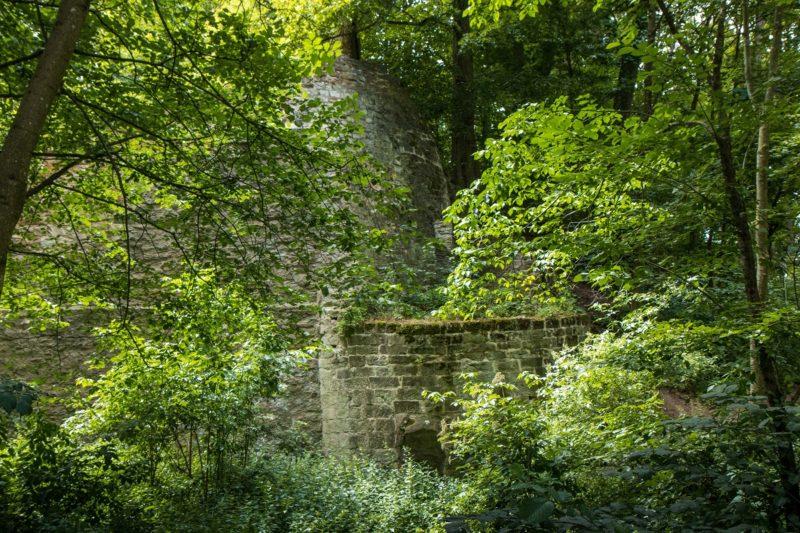 Die Burgruine Zabelstein im Steigerwald - Wanderung Rund um den Zabelstein