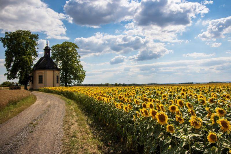 Die Dreifaltigkeitskirche bei Traustadt - Wanderung Rund um den Zabelstein