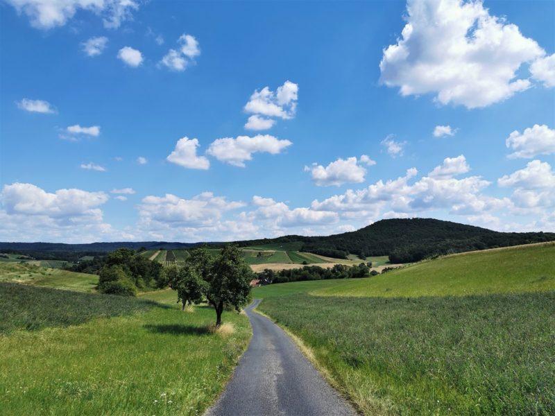Richtung Michelau im Steigerwald - Wanderung Rund um den Zabelstein