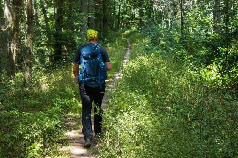 Wanderung Rund um den Zabelstein