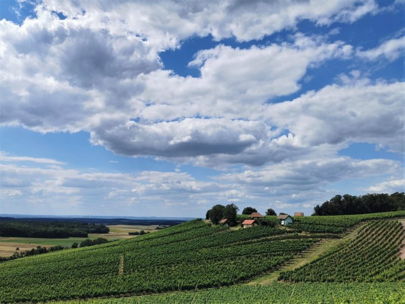 Weinbergshäuschen am Donnersdorfer Falkenberg - Wanderung Rund um den Zabelstein