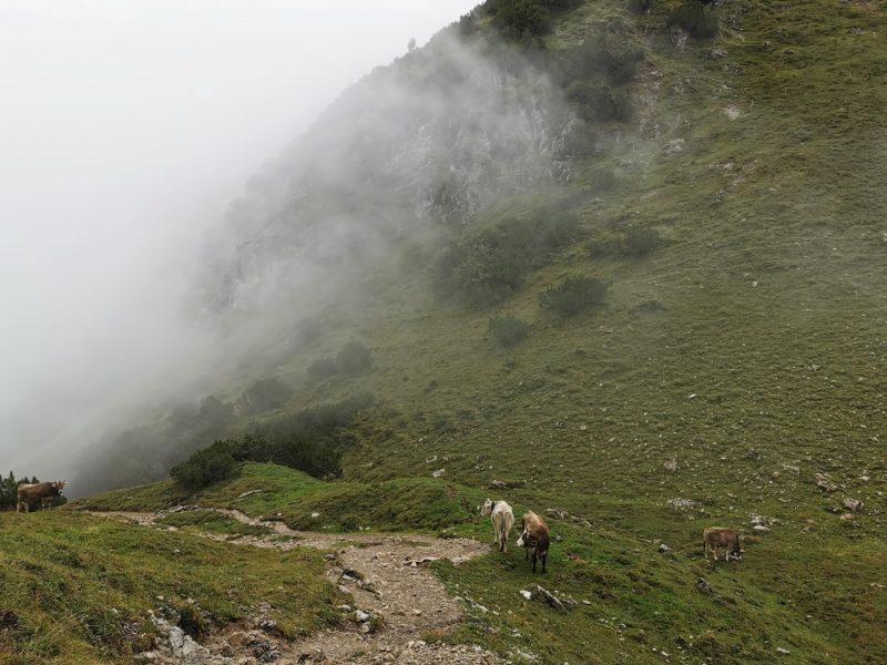 Aufstieg auf das Rubihorn im Allgäu
