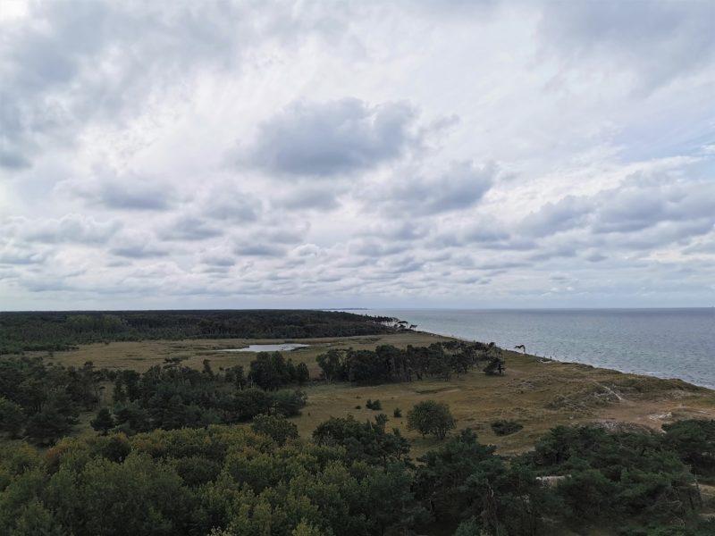 Ausblick vom Leuchtturm Darßer Ort im Nationalpark Vorpommersche Boddenlandschaft in Mecklenburg-Vorpommern