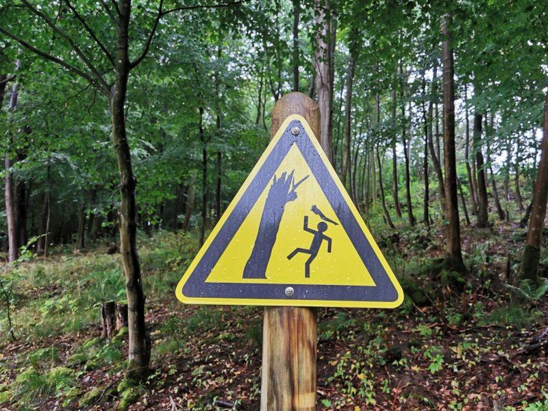 Schild: Achtung, fallender Ast