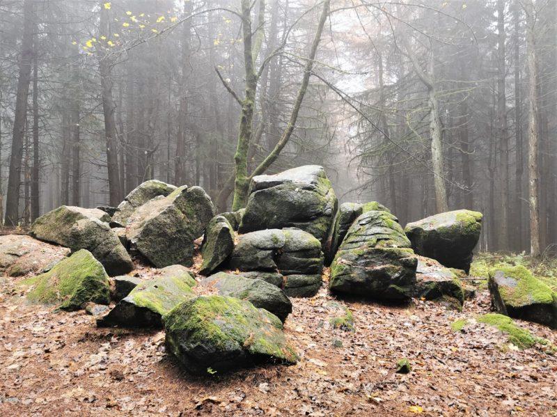 Basaltsteine auf der Extratour Guckaisee in der Rhön