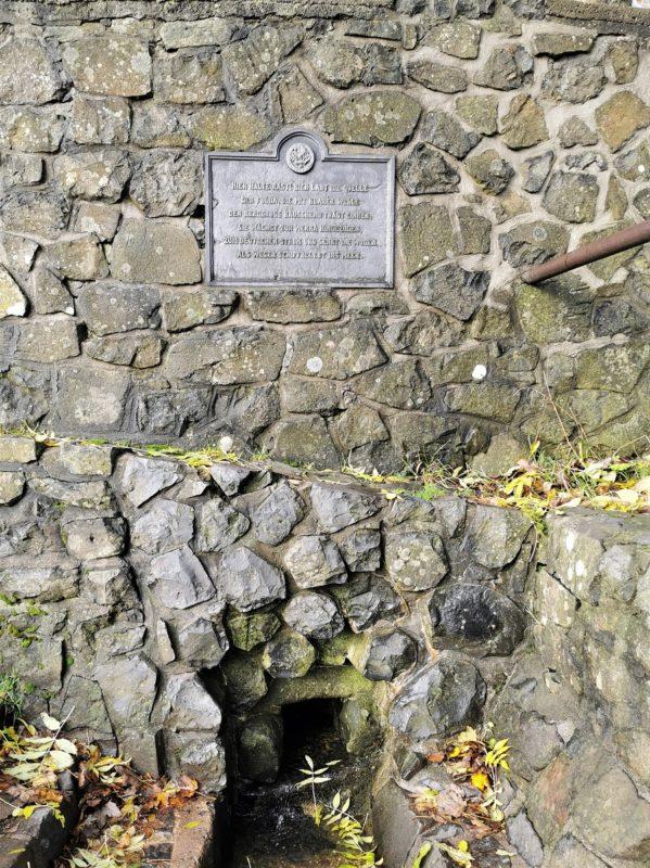 Fuldaquelle auf der Extratour Guckaisee in der Rhön