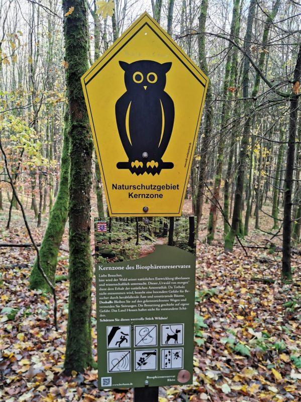 Kernzone Kernzone vom UNESCO-Biosphärenreservat Rhön auf der Extratour Guckaisee
