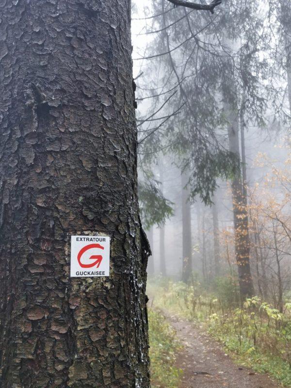 Wegmarkierung Extratour Guckaisee in der Rhön